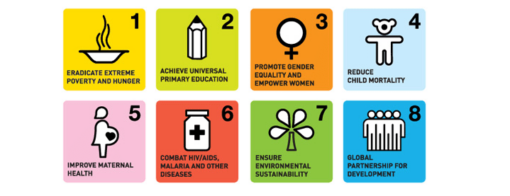 MDGs-notable-challenges